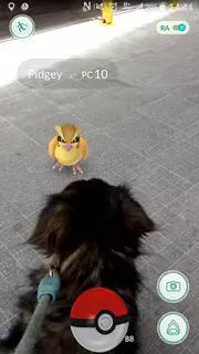 Pokemon GO Screenshots 2